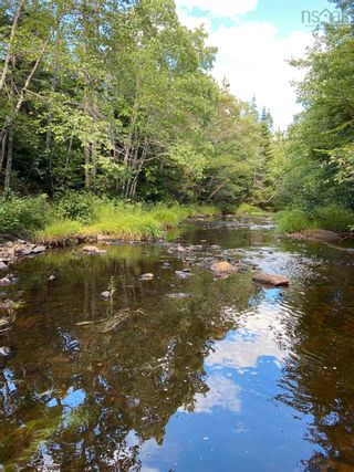 Photo 6: Lot Highway 4 False Bay Brook in River Bourgeois: 305-Richmond County / St. Peters & Area Vacant Land for sale (Highland Region)  : MLS®# 202123291