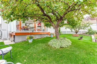 Photo 6: 9739 Sanderling Way NW in Calgary: Sandstone Valley Detached for sale : MLS®# A1147076