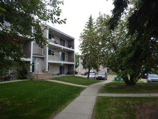 Photo 2:  in Edmonton: Zone 29 Condo for sale : MLS®# E4248069