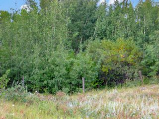 Photo 6: 24180 Meadow Drive in Rural Rocky View County: Rural Rocky View MD Residential Land for sale : MLS®# A1098296