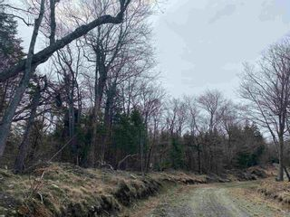 Photo 19: Lots Hectanooga Road in Mayflower: 401-Digby County Vacant Land for sale (Annapolis Valley)  : MLS®# 202118142