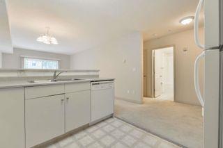 Photo 11: 102 11408 108 Avenue in Edmonton: Zone 08 Condo for sale : MLS®# E4253242