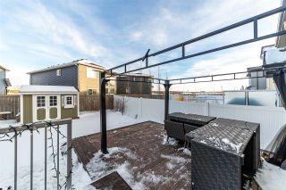 Photo 34: 27 Riviere Terrace: St. Albert House for sale : MLS®# E4229596