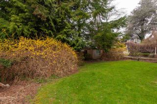 Photo 22: 5511 OLYMPIC Street in Vancouver: Dunbar House for sale (Vancouver West)  : MLS®# R2556141