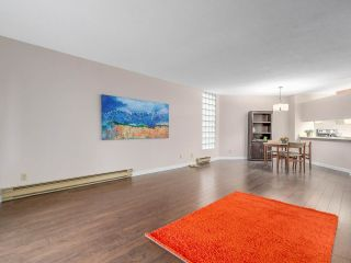 """Photo 5: 203 3191 MOUNTAIN Highway in North Vancouver: Lynn Valley Condo for sale in """"Lynn Terrace II"""" : MLS®# R2133788"""
