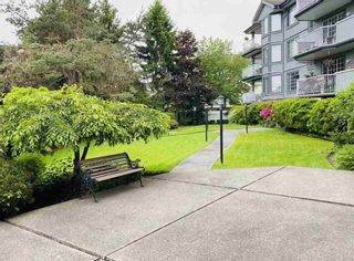 """Photo 3: 203 5375 205 Street in Langley: Langley City Condo for sale in """"GLENMONT PARK"""" : MLS®# R2455636"""