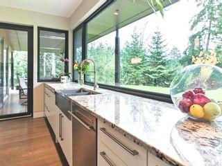 Photo 40: 6455 Phantom Rd in : Na Upper Lantzville House for sale (Nanaimo)  : MLS®# 860246