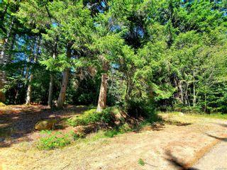 Photo 4: 6929 Sellars Dr in Sooke: Sk Broomhill Land for sale : MLS®# 881597
