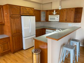 Photo 10: 208 10728 82 Avenue NW in Edmonton: Zone 15 Condo for sale : MLS®# E4259567