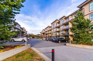 """Photo 3: 317 30525 CARDINAL Avenue in Abbotsford: Abbotsford West Condo for sale in """"Tamarind"""" : MLS®# R2520530"""