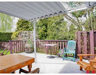 """Photo 8: 19719 50A Ave in Langley: Langley City House for sale in """"Eagle Heights"""" : MLS®# F2708352"""