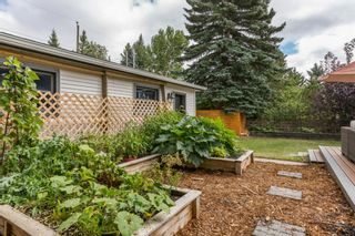 Photo 38: 64 Rosevale Drive NW in Calgary: Rosemont Detached for sale : MLS®# A1141309