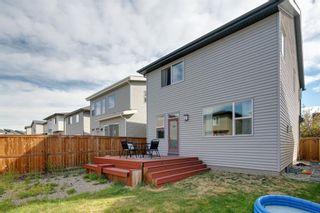 Photo 40: 183 Walden Terrace SE in Calgary: Walden Detached for sale : MLS®# A1123149