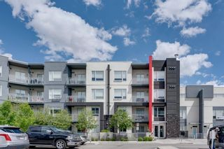 Photo 4: 309 8531 8A Avenue SW in Calgary: West Springs Apartment for sale : MLS®# A1121535