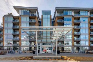 Photo 28: 205 2510 109 Street in Edmonton: Zone 16 Condo for sale : MLS®# E4239207