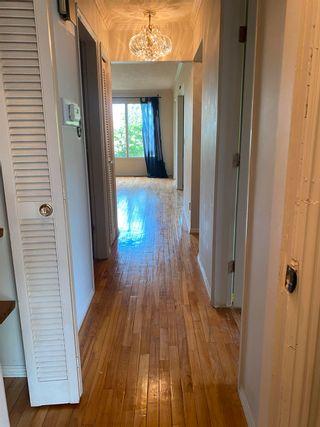 Photo 14: 3011 132A Avenue in Edmonton: Zone 35 House Half Duplex for sale : MLS®# E4248216