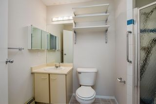 Photo 10: 12 3212 Edenwold Heights NW in Calgary: Edgemont Apartment for sale : MLS®# A1073287