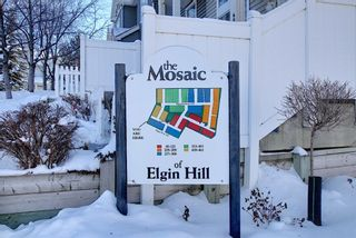 Photo 27: 52 Elgin Gardens SE in Calgary: McKenzie Towne Row/Townhouse for sale : MLS®# A1069122