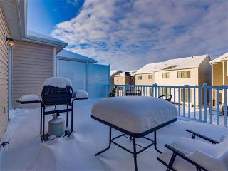 Photo 24: 10706 CITYSCAPE Drive NE in Calgary: Cityscape House for sale : MLS®# C4093905