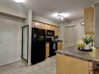 Photo 6: 216 - 13005 140 Avenue in Edmonton: Zone 27 Condo for sale : MLS®# E4232988