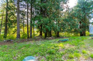 Photo 33: 26562 REYNOLDS Road in Hope: Hope Center House for sale : MLS®# R2504768