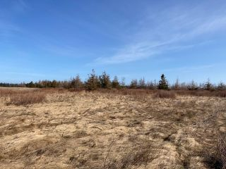 Photo 10: 92-1 Malagash Road in Malagash Point: 102N-North Of Hwy 104 Vacant Land for sale (Northern Region)  : MLS®# 202108290