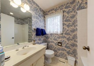 Photo 22: 151 Bay View Drive SW in Calgary: Bayview Detached for sale : MLS®# A1141688