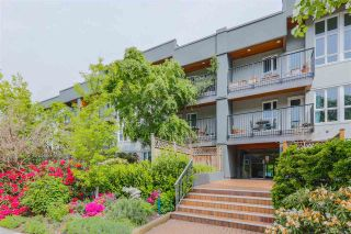 """Photo 14: 207 1551 W 11TH Avenue in Vancouver: Fairview VW Condo for sale in """"LABURNUM HEIGHTS"""" (Vancouver West)  : MLS®# R2594194"""