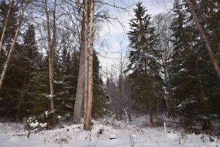 """Photo 18: 3 3000 DAHLIE Road in Smithers: Smithers - Rural Land for sale in """"Mountain Gateway Estates"""" (Smithers And Area (Zone 54))  : MLS®# R2280165"""