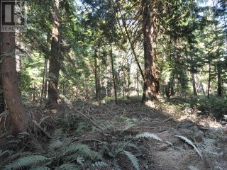 Photo 7: 1239/1241 VANCOUVER BLVD in Savary Island: Vacant Land for sale : MLS®# 16136
