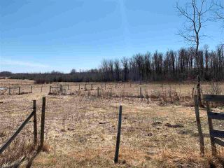 Photo 13: 42540A HWY 13: Rural Flagstaff County House for sale : MLS®# E4237916