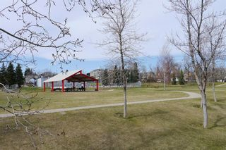 Photo 33: 302 1908 28 Avenue SW in Calgary: South Calgary Apartment for sale : MLS®# A1113408
