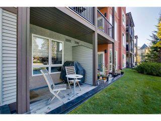 Photo 22: 115 3600 15A Street SW in Calgary: Altadore_River Park Condo for sale : MLS®# C4034020