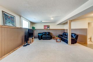 Photo 25: 16 Meadow Close: Cochrane Detached for sale : MLS®# A1088829
