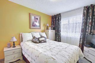 Photo 14: 13515 68 Street in Edmonton: Zone 02 House for sale : MLS®# E4253078