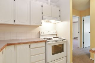 """Photo 8: 310 625 HAMILTON Street in New Westminster: Uptown NW Condo for sale in """"CASA DEL SOL"""" : MLS®# R2559844"""