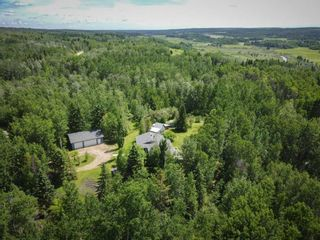 Photo 49: 26 460002 Hwy 771: Rural Wetaskiwin County House for sale : MLS®# E4237795