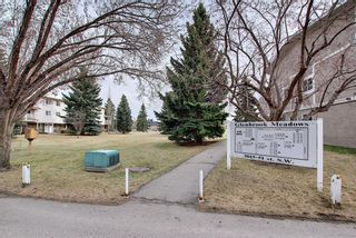 Photo 37: 140 3015 51 Street SW in Calgary: Glenbrook Row/Townhouse for sale : MLS®# A1092906