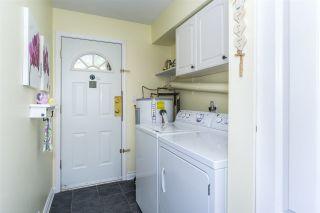 Photo 14: 20247 PATTERSON Avenue in Maple Ridge: Southwest Maple Ridge House for sale : MLS®# R2279033