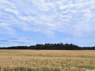 Photo 7: RM 486 5 Quarter Land in Moose Range: Farm for sale (Moose Range Rm No. 486)  : MLS®# SK867716