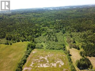 Photo 8: 100 Mount Pleasant Road in St. George: Vacant Land for sale : MLS®# NB059440