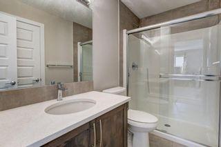 Photo 30: 179 Savanna Way NE in Calgary: Saddle Ridge Detached for sale : MLS®# A1116471
