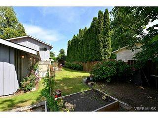 Photo 16: 5218 Cordova Bay Rd in VICTORIA: SE Cordova Bay House for sale (Saanich East)  : MLS®# 735348