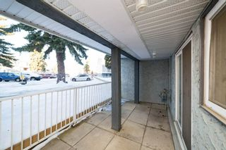 Photo 28: 215 10404 24 Avenue in Edmonton: Zone 16 Carriage for sale : MLS®# E4231349