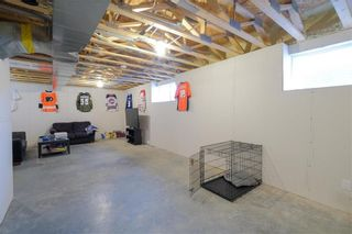 Photo 16: 19 Briarfield Court in Niverville: R07 Residential for sale : MLS®# 202107964
