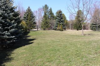 Photo 45: 8425 E Trotters Lane in Cobourg: House for sale : MLS®# X5186868