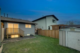 Photo 3: 257 Bedford Circle NE in Calgary: Beddington Heights Semi Detached for sale : MLS®# A1112060