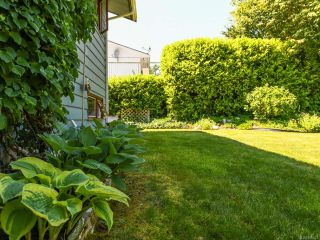 Photo 51: 1664 Elm Ave in COMOX: CV Comox (Town of) House for sale (Comox Valley)  : MLS®# 816423