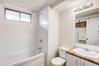 Photo 32: 18 Erin Meadow Close SE in Calgary: Erin Woods Detached for sale : MLS®# A1143099