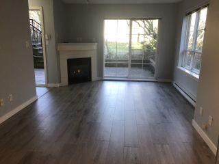 """Photo 1: 14 9339 ALBERTA Road in Richmond: McLennan North Condo for sale in """"Trellaine"""" : MLS®# R2326104"""